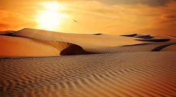 desert-790640_1920